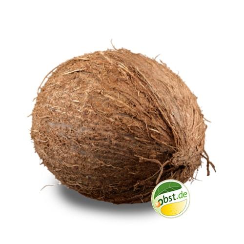 Kokosnuss_ohne_Logo-min