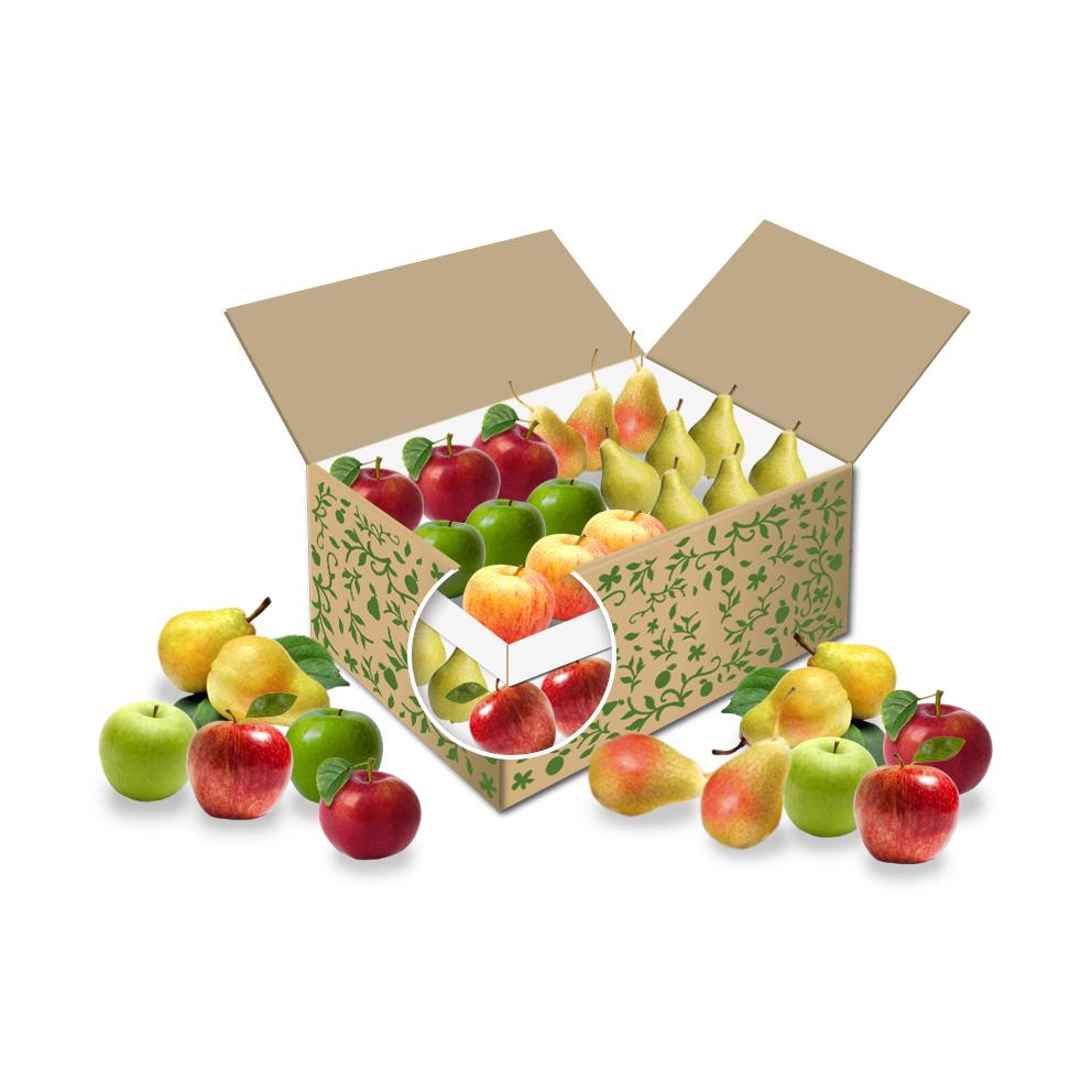 Große Bürobox Apfel + Birne