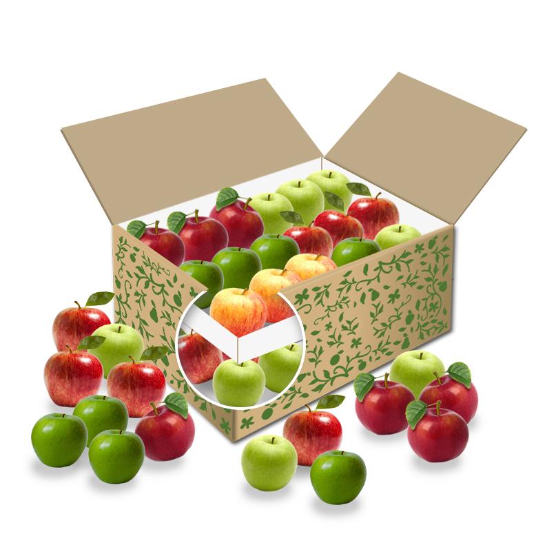 Große Bürobox Apfel