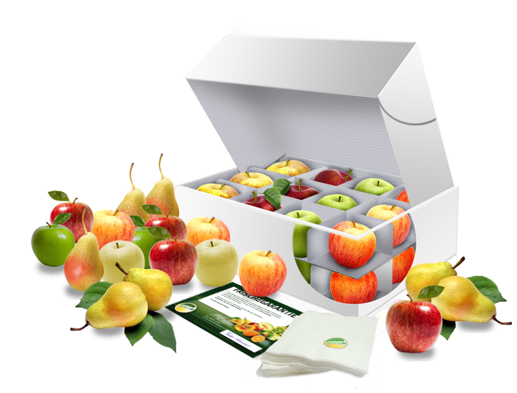 Bürobox Apfel + Birne