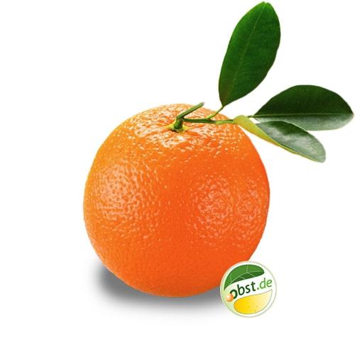 Orange_ohne_Logo-min